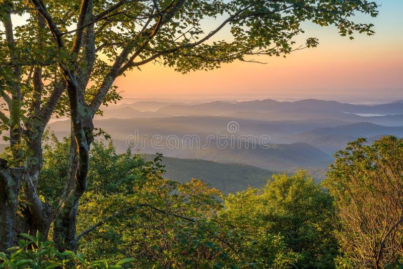 蓝岭山脉,风景日出 免版税图库摄影