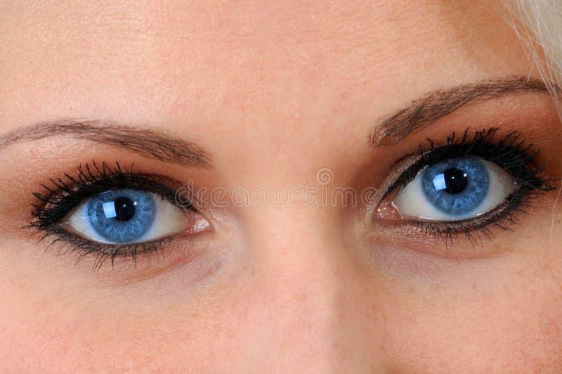 蓝眼睛反映灵魂 库存照片