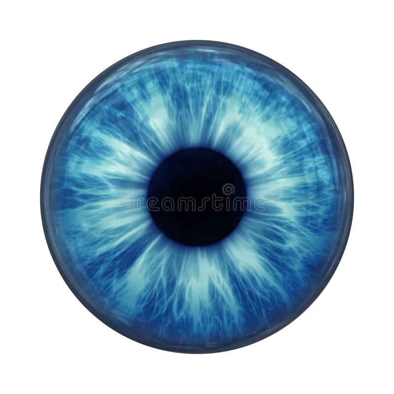 蓝眼睛 皇族释放例证