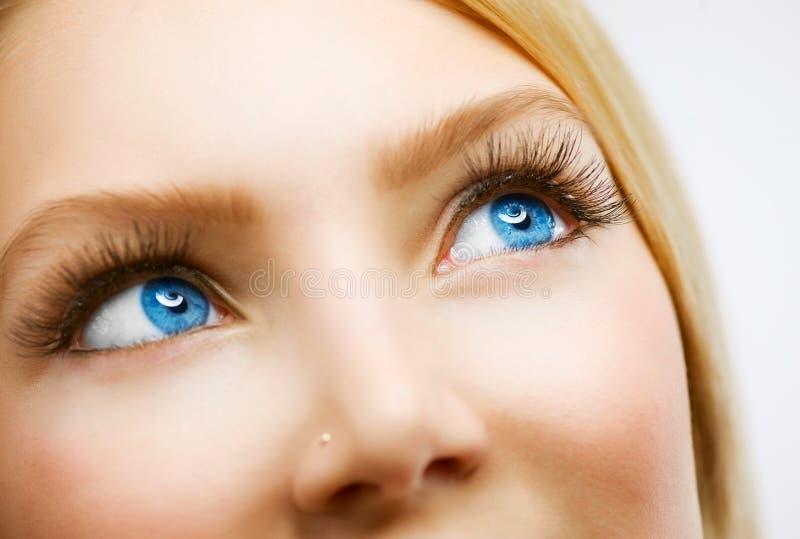 蓝眼睛 库存照片