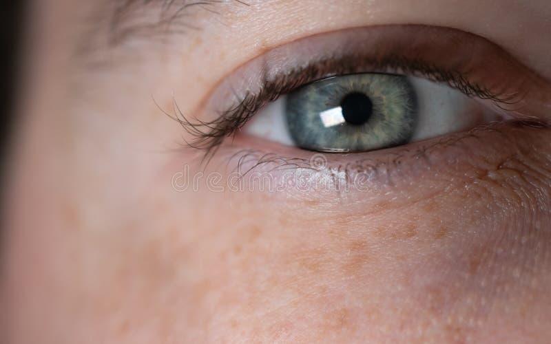蓝绿白人眼睛 图库摄影