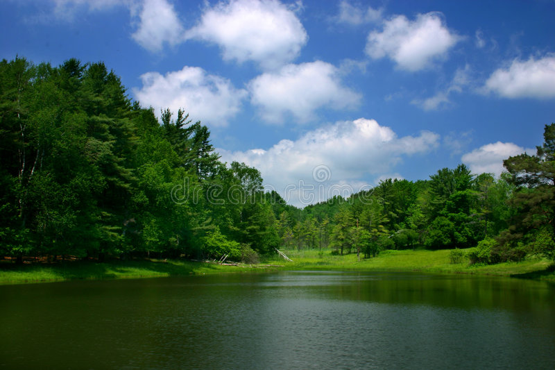 Download 蓝绿色白色 库存图片. 图片 包括有 外面, 地产, 结构树, 户外, 天空, 绿色, 云彩, 本质, 蓝色 - 180837