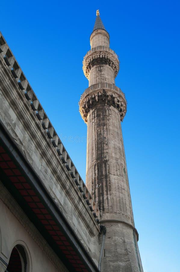 蓝色伊斯坦布尔清真寺火鸡
