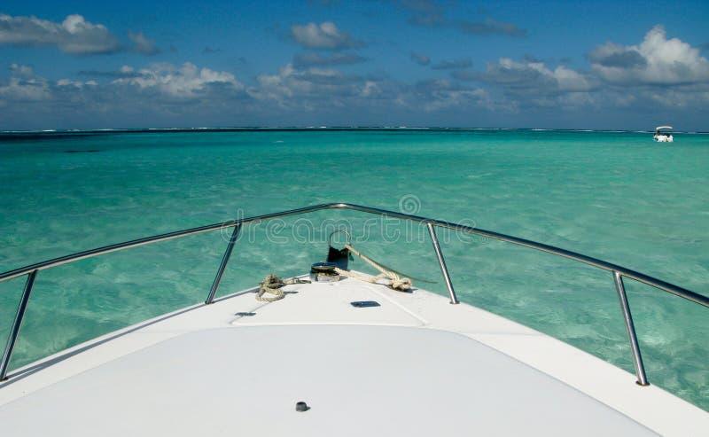 蓝色加勒比城市黄貂鱼水 免版税库存图片