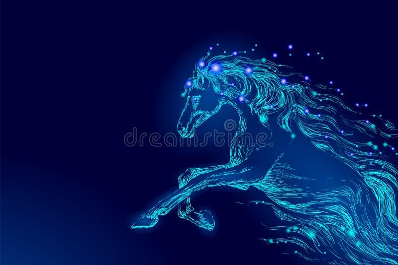 蓝色发光的马骑术夜空星 创造性的装饰不可思议的背景光亮的波斯菊空间月光幻想 皇族释放例证