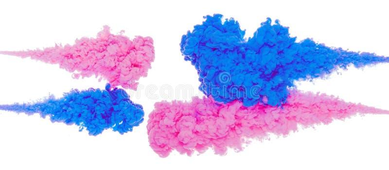 蓝色和桃红色墨水飞溅的抽象油漆背景颜色在白色背景隔绝的水中 免版税库存照片