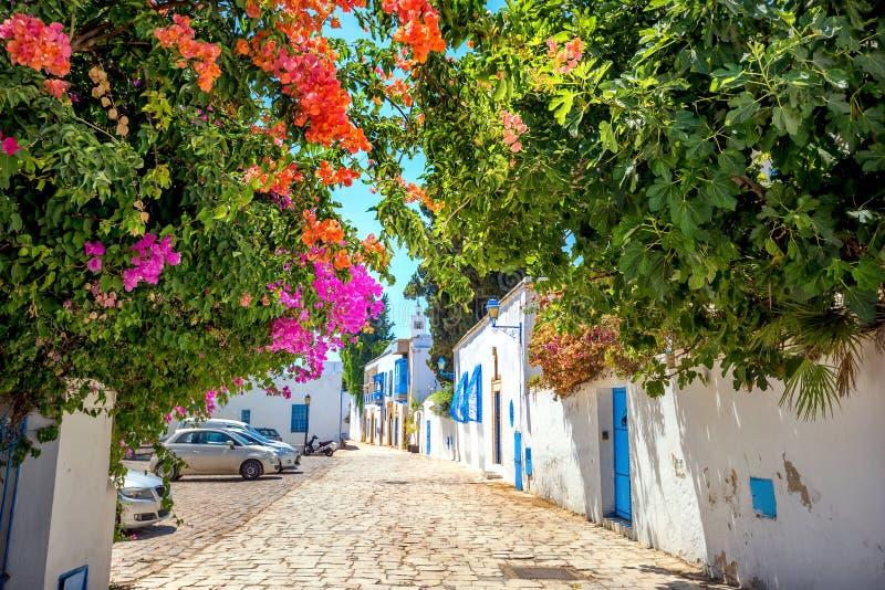 蓝色和白色镇西迪布赛义德都市风景  突尼斯,北非 免版税库存图片