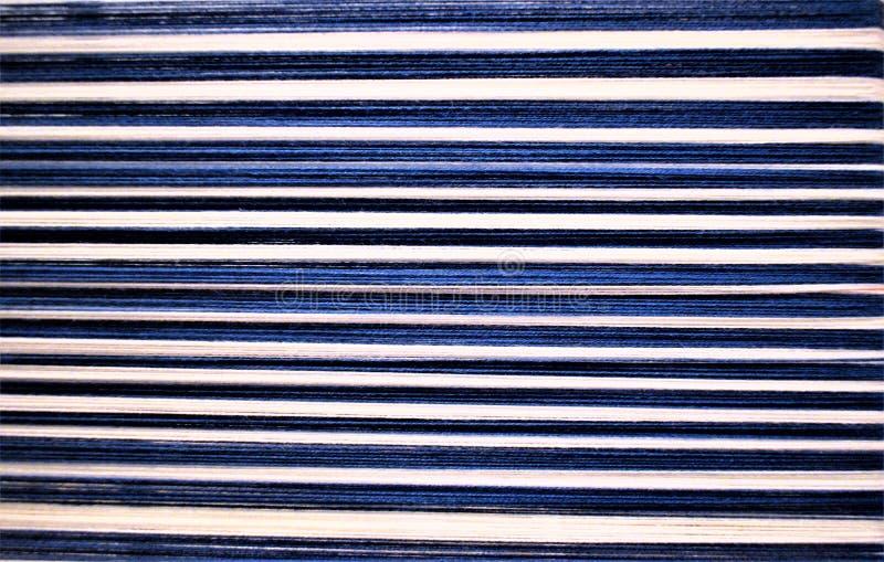 蓝色和白色镶边经线特写镜头  Handweaving 纺织品 纤维 免版税库存照片