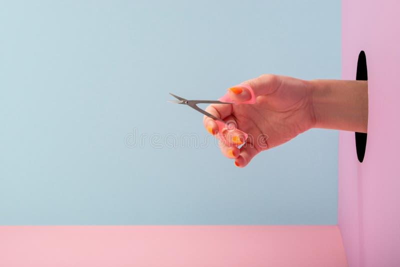 蓝色和粉红色背景中的女性手持剪刀修指甲 库存图片