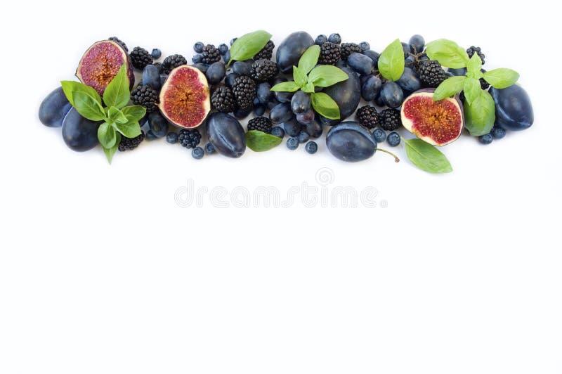 蓝色和紫色食物 小组新鲜水果和莓果与蓬蒿` s在白色背景 免版税库存照片