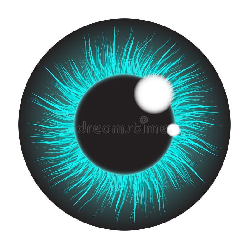 蓝色在白色bac隔绝的虹膜眼睛现实传染媒介布景 库存例证