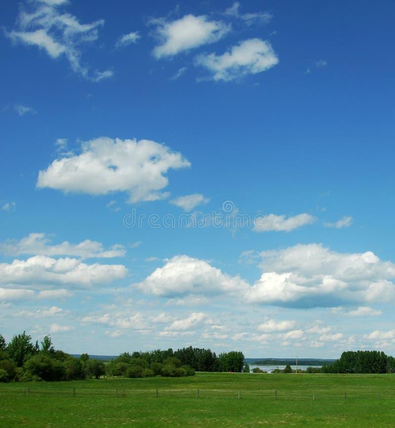 蓝色大草原天空 库存图片