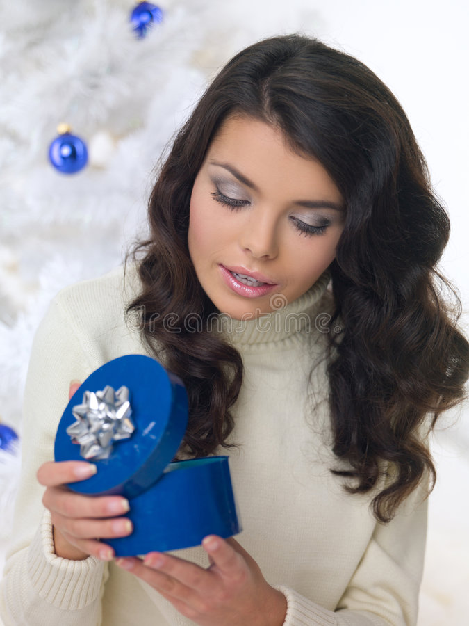 蓝色小鸡圣诞节 库存图片