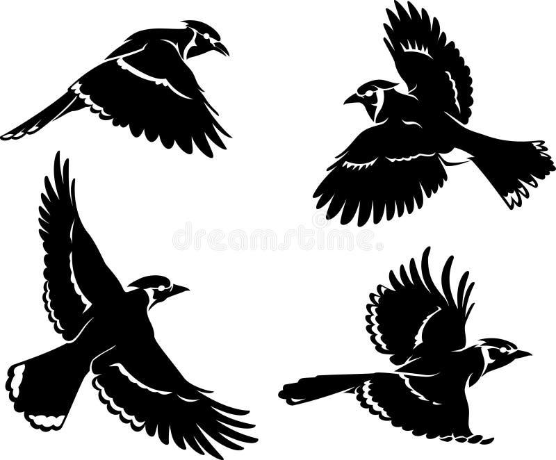 蓝色尖嘴鸟鸟集合剪影 皇族释放例证
