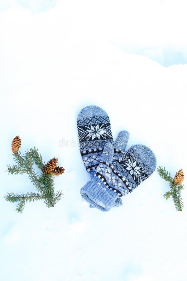 蓝色手套和说谎在雪的冷杉球果 免版税库存图片