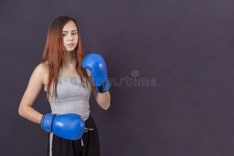 蓝色拳击手套的拳击手女孩在机架的一件灰色T恤杉在灰色背景 库存图片