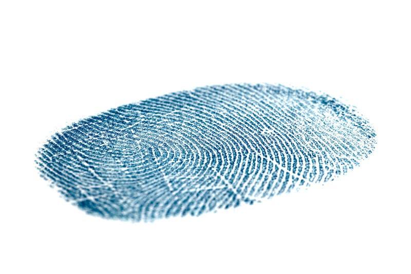 蓝色指纹查出的白色 库存照片