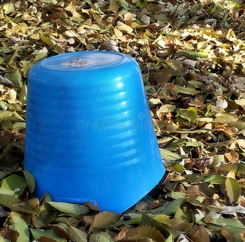 蓝色接触在秋天的 库存图片