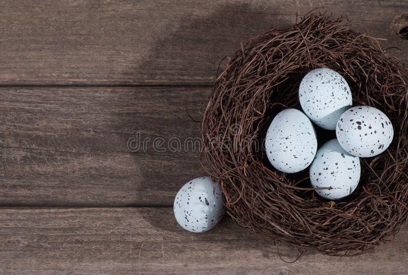 蓝色有斑点的鸡蛋 免版税库存图片
