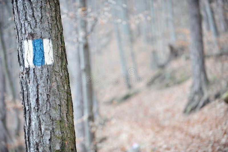 蓝色条纹标号 免版税库存图片