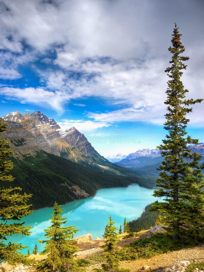 蓝色梦莲湖,加拿大人罗基斯,班夫国家公园,亚伯大,加拿大 免版税库存照片