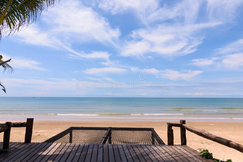 蓝色椰子天空结构树 在热带海岸的棕榈树 库存照片