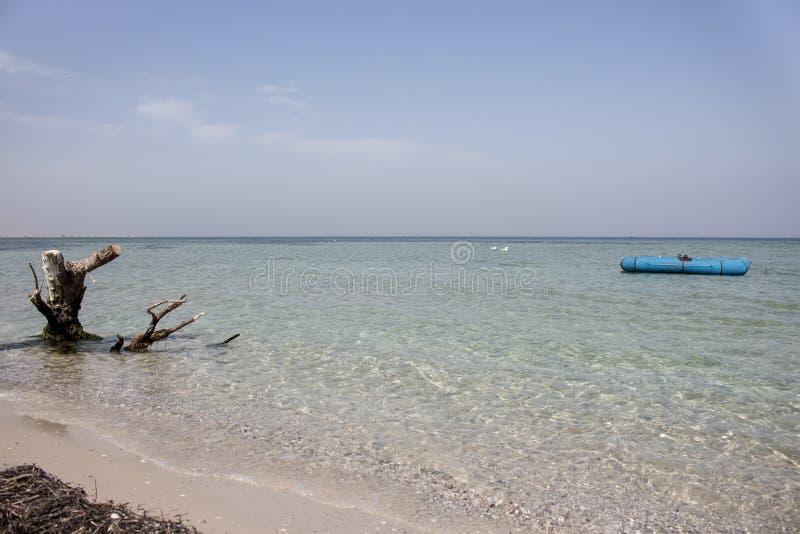 蓝色橡皮艇、坐的海鸥和被风化的断枝在风平浪静 热带假期和天堂概念 海景背景 免版税库存照片