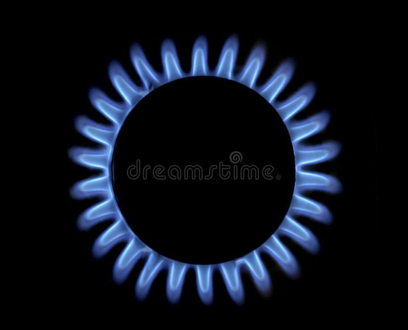蓝色气体火焰 免版税库存图片