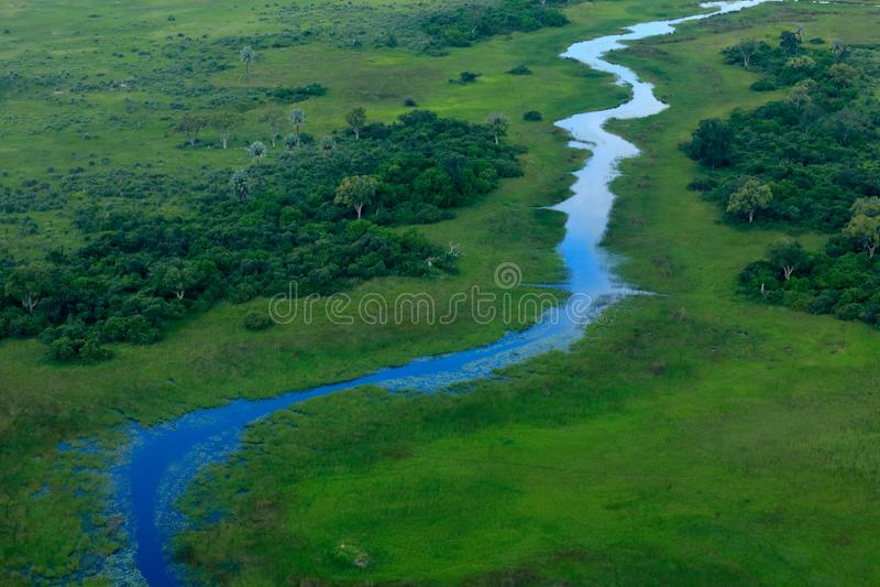 蓝色流浪者,在Okavango三角洲,博茨瓦纳的空中风景 湖和河,从飞机的看法 绿色植被在南非 T 免版税库存照片