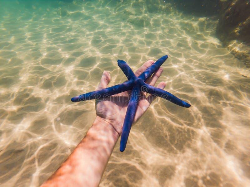 蓝色海星在水下的手上 库存照片
