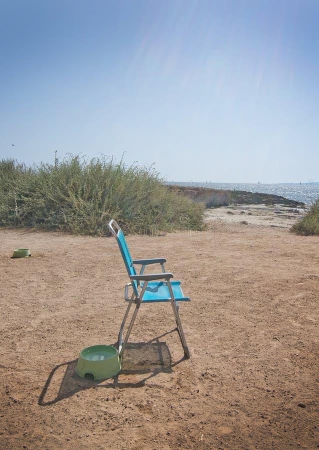 蓝色海滩睡椅和狗水碗 免版税库存照片