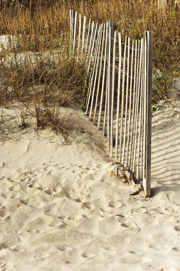 蓝色深刻的沙丘范围沙子天空棕褐色 免版税库存图片
