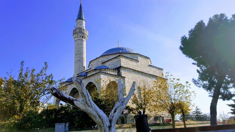 蓝色清真寺的反面 免版税库存图片