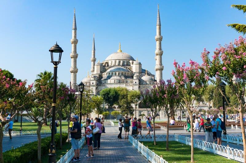 蓝色清真寺, Sultanahmet Camii内在围场 免版税图库摄影