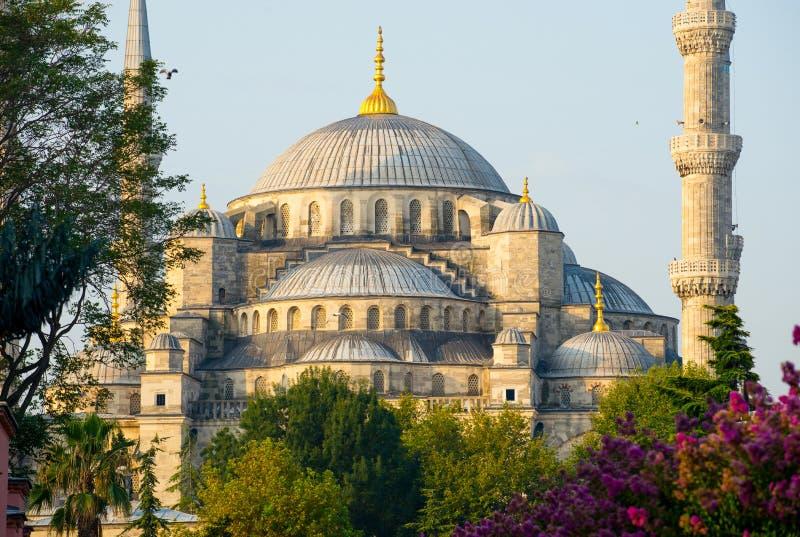 蓝色清真寺- Sultanahmet Camii -伊斯坦布尔,土耳其 图库摄影