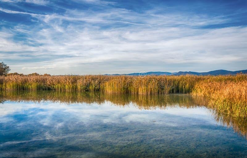 蓝色湖在秋天 免版税库存图片