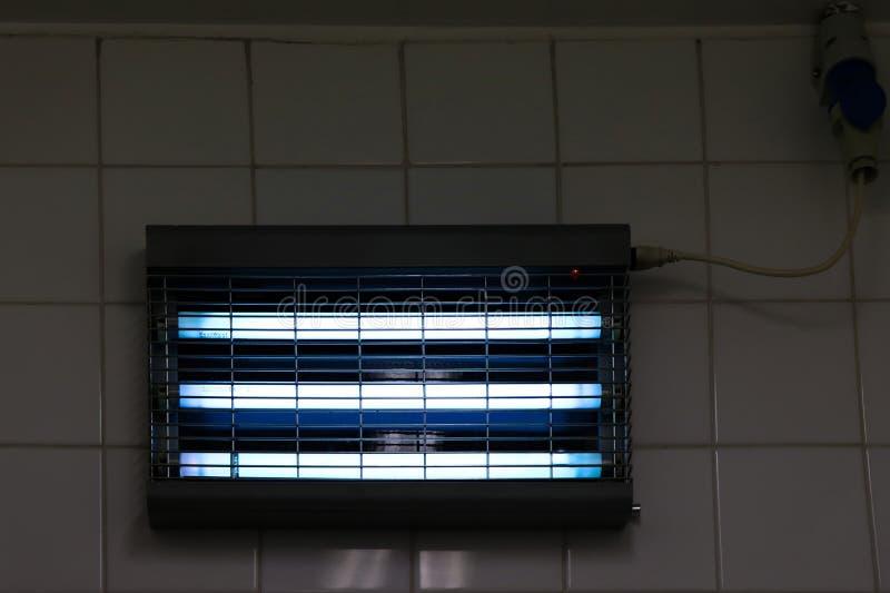 蓝色灯氖 免版税库存照片