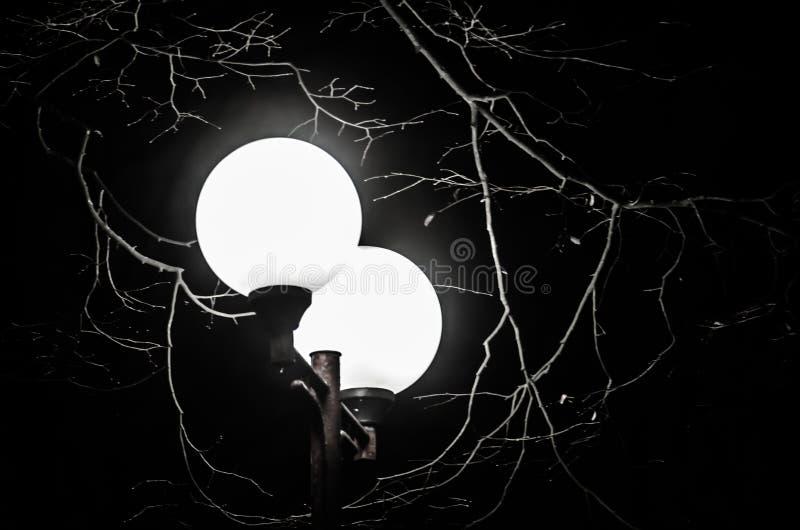 蓝色照明设备天空街道村庄 街灯在黑暗中发光 库存图片