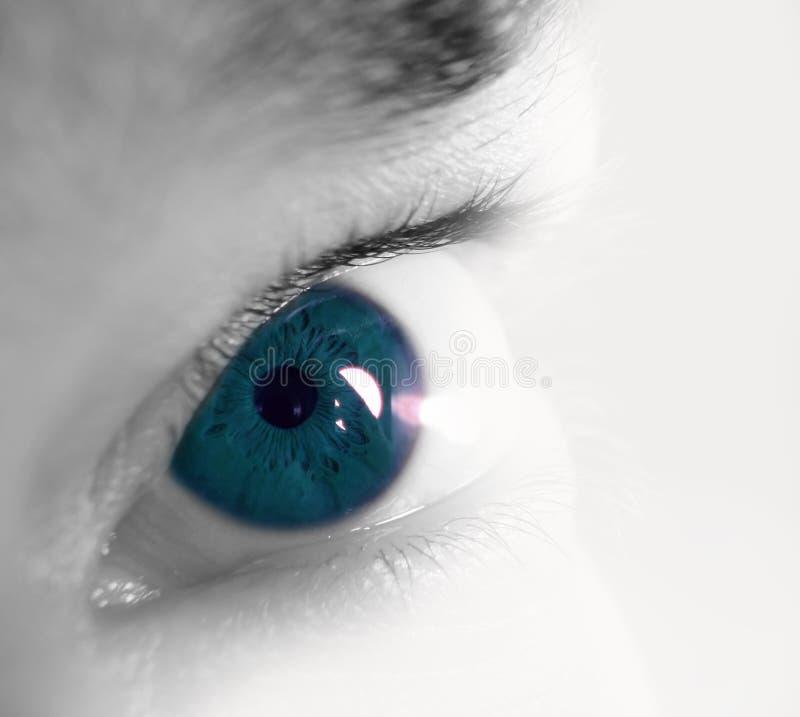蓝色特写镜头眼睛虹膜 免版税库存照片