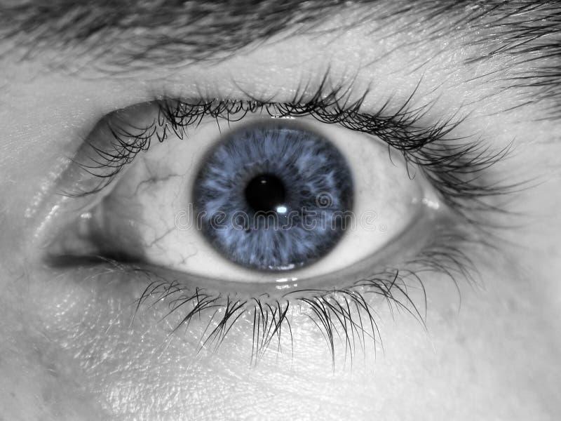 蓝色特写镜头眼睛 免版税库存照片