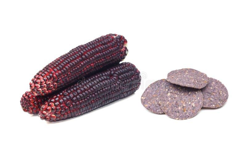 蓝色玉米和玉米粉薄烙饼芯片 库存图片
