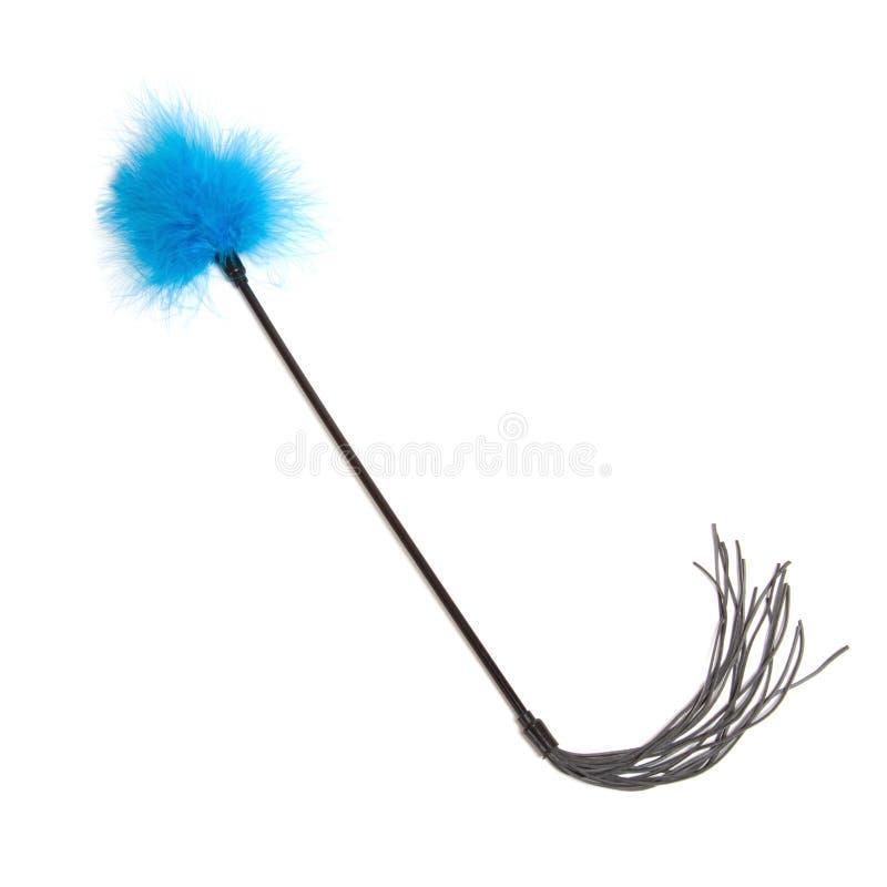 蓝色用羽毛装饰的迷信鞭子 图库摄影