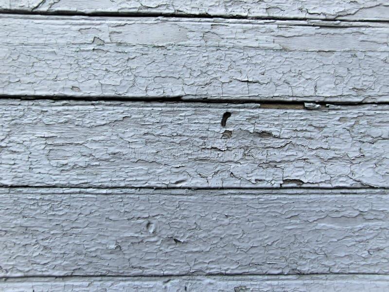 蓝色的,背景三老被绘的委员会 图库摄影