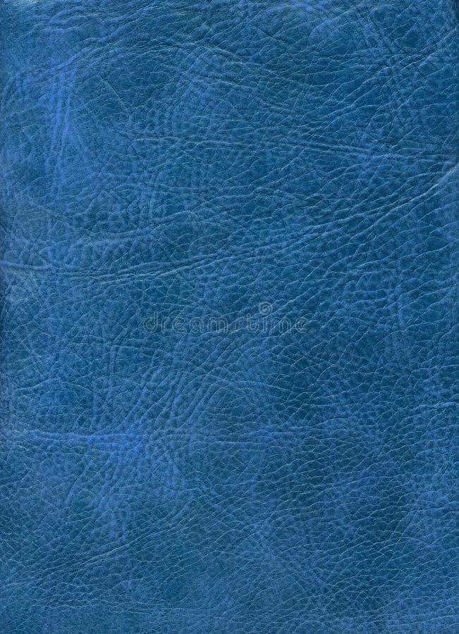 蓝色皮革自然纹理 库存照片