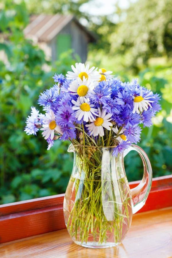 蓝色矢车菊和雏菊花束在水罐 免版税库存图片