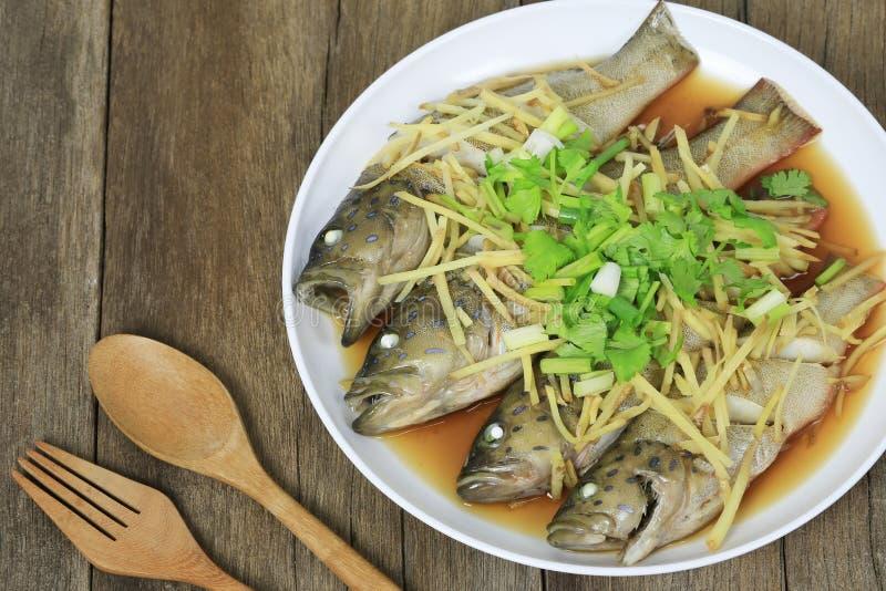 蓝色石斑鱼鱼蒸了在白色盘的酱油在棕色wo 库存照片