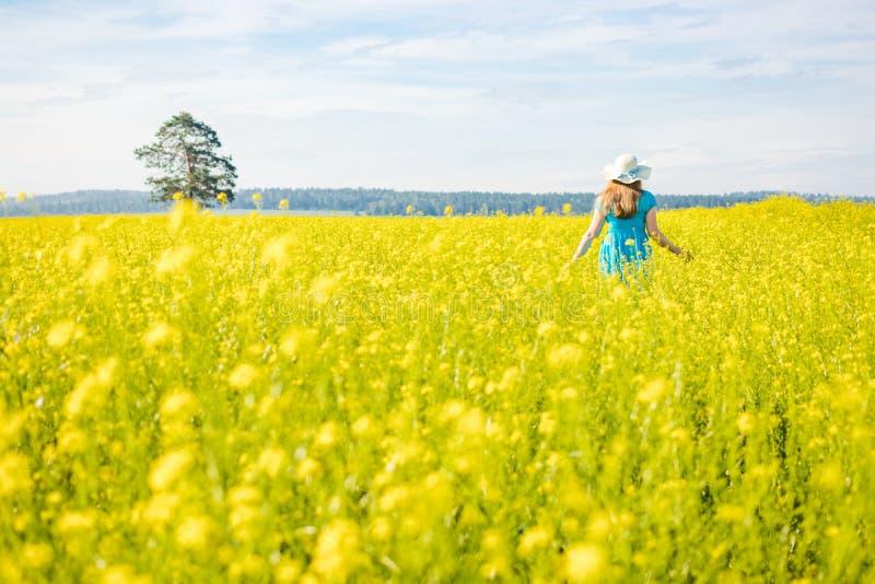 蓝色礼服和草帽步行的风景妇女在黄色菜子领域 库存照片