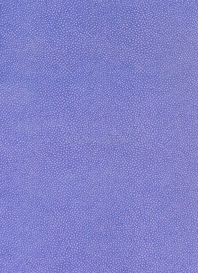 蓝色纹理模式 免版税库存照片