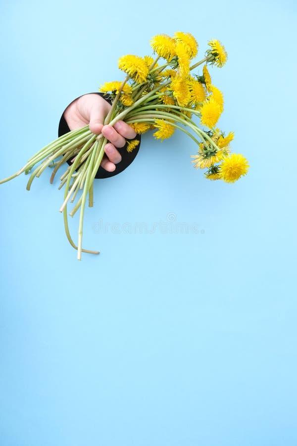 蓝色背景中的黄色蒲公英花 概念快乐夏天 明信片模板 库存图片