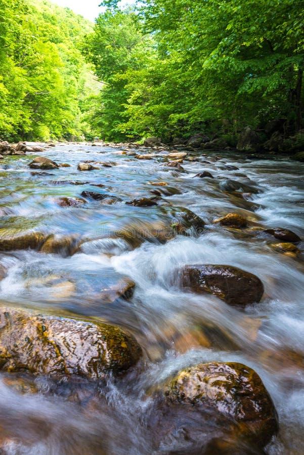 蓝色背脊山河流程 库存图片